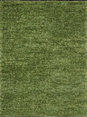 FAN1-GRE