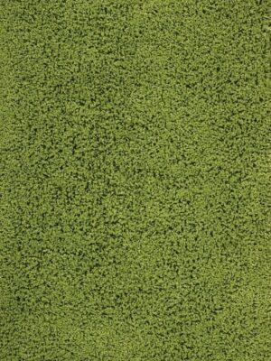 zen01was6x8 (533x800)