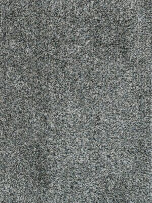 CARRCG-02MISL_lg