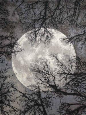 twili_twi17_moon_